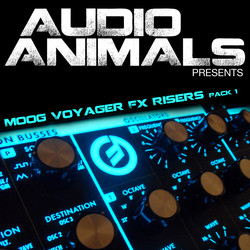 Audio Animals Moog Voyager FX and Risers