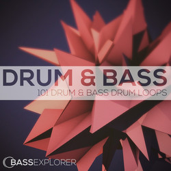 Bass Explorer 101 Drum & Bass Drum Loops
