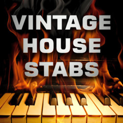 Wildfunk Vintage House Stabs