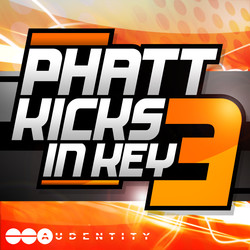 Audentity Phatt Kicks In Key 3