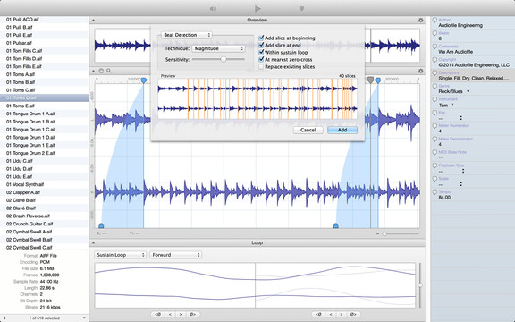 Audiofile Engineering Loop Editor 2