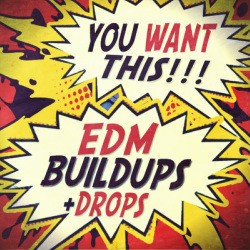 Function Loops EDM Buildups & Drops