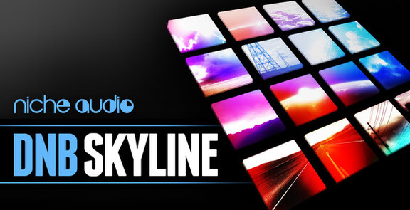 Niche Audio DnB Skyline