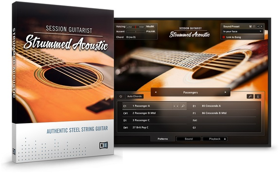 Session Guitarist - Strummed Acoustic