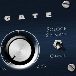 Bob Perry Audio Gate