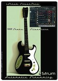 AudioWarrior 1963 SilverTone Electric Guitar and Electrik Lead Guitar
