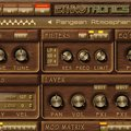 Back In Time Records Ethnotronic VST