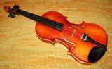 bioLogic Violin