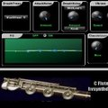 HV Synth Design FluteCollection