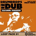 Loopmasters Drumdrops in Dub Volume 2 - Loop Pack 1