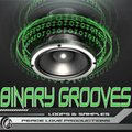 Peace Love Production Binary Grooves