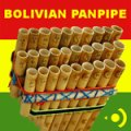 Precisionsound Bolivian Panpipe