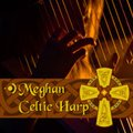 Precisionsound Meghan Celtic Harp