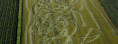 Crop circle - but different