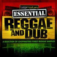 Loopmasters Essential Reggae and Dub sample pack