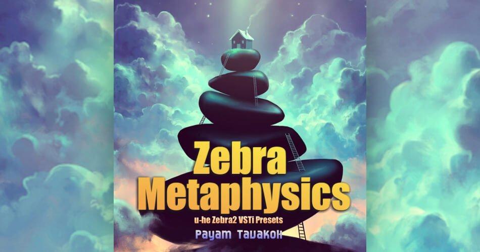 Zebra Metaphysics