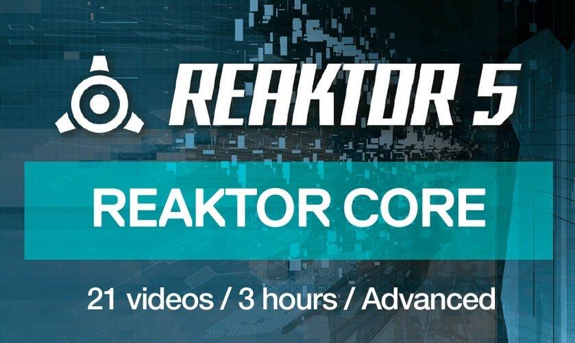 reaktor core