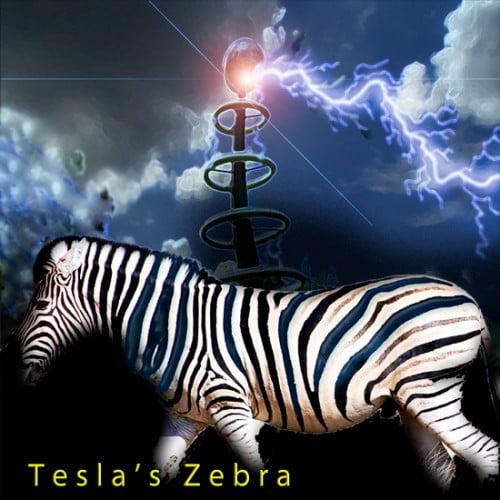 Vintage Synth Pads Tesla's Zebra