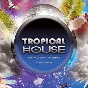Pulsed Records Tropical House
