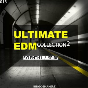 Bingoshakerz Ultimate EDM Collection 2