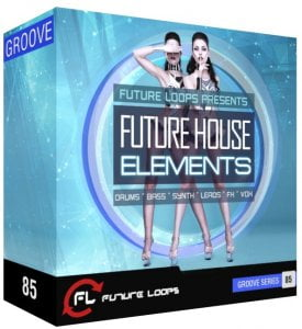 Future Loops Future House Elements
