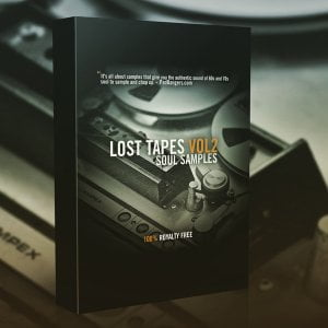 Producers Choice Lost Tapes Vol 2 Soul Samples