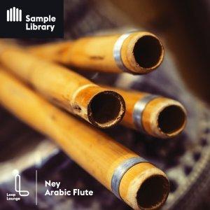 Loop Lounge NEY Arabic Flute