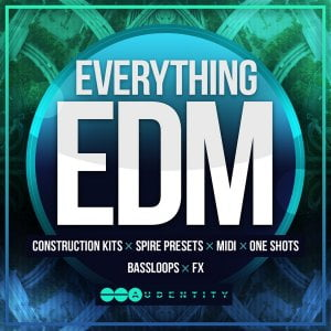 Audentity Everything EDM
