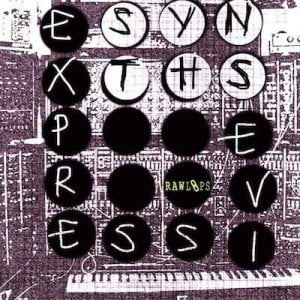 Raw Loops Expressive Synths