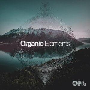 Black Octopus Organic Elements