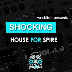 Vandalism Shocking House for Spire
