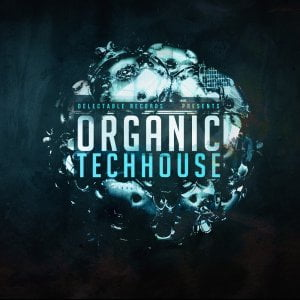 Delectable Records Organic Tech House