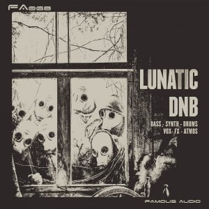 Famous Audio Lunatic DnB