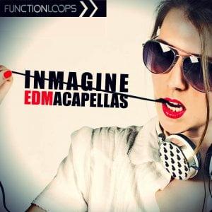 Function Loops - Inmagine EDM Acapellas
