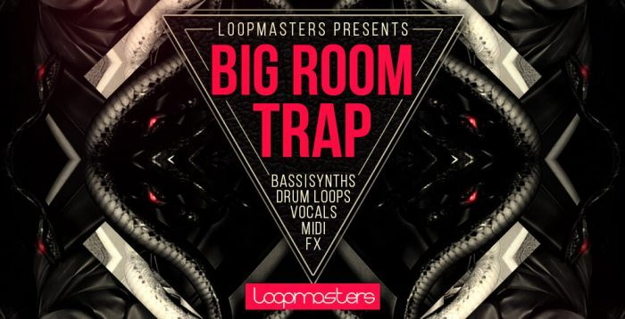Loopmasters Big Room Trap