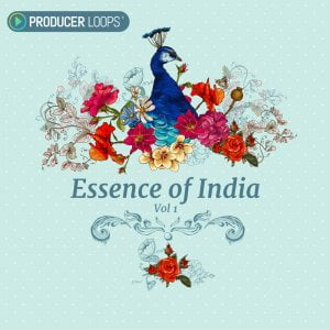 Producer Loops Essence of India Vol 1