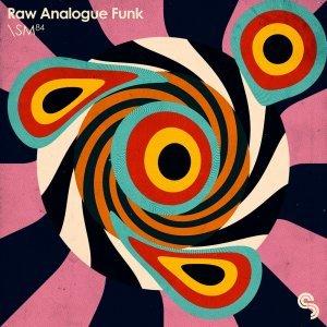 Sample Magic Raw Analogue Funk