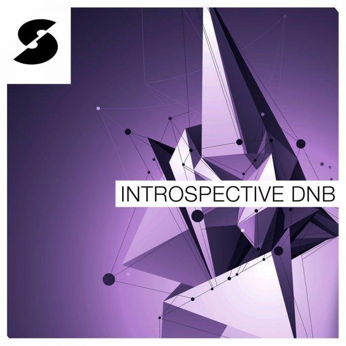 Samplephonics Introspective DnB