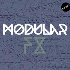 Raw Loops Modular FX