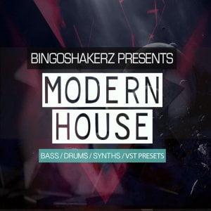 Bingoshakerz Modern House