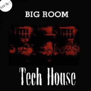 Raw Loops Big Room Tech House