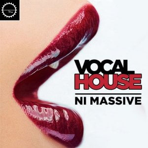 Industrial Strength Vocal House NI Massive