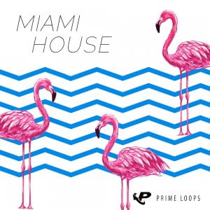 Prime Loops Miami House