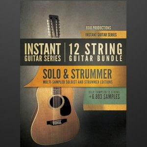 8Dio 12 String Guitar Bundle