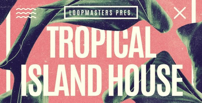 loopmasters-tropical-island-house