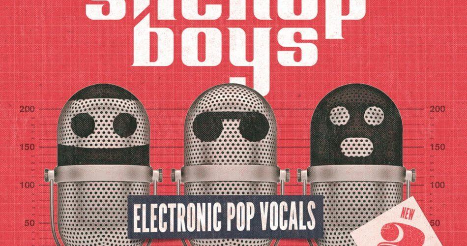 Producer Loops Stick Up Boys Electronic Pop Vocals V2