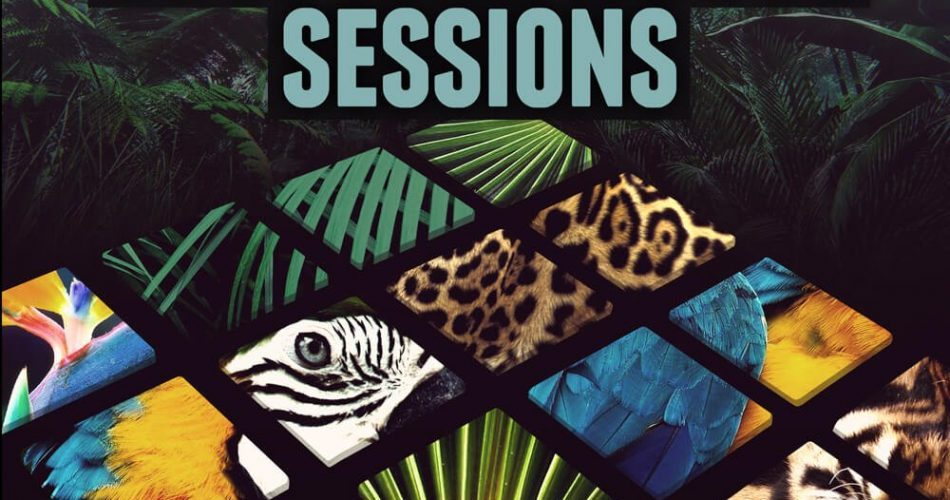 Niche Audio Tropical House Sessions