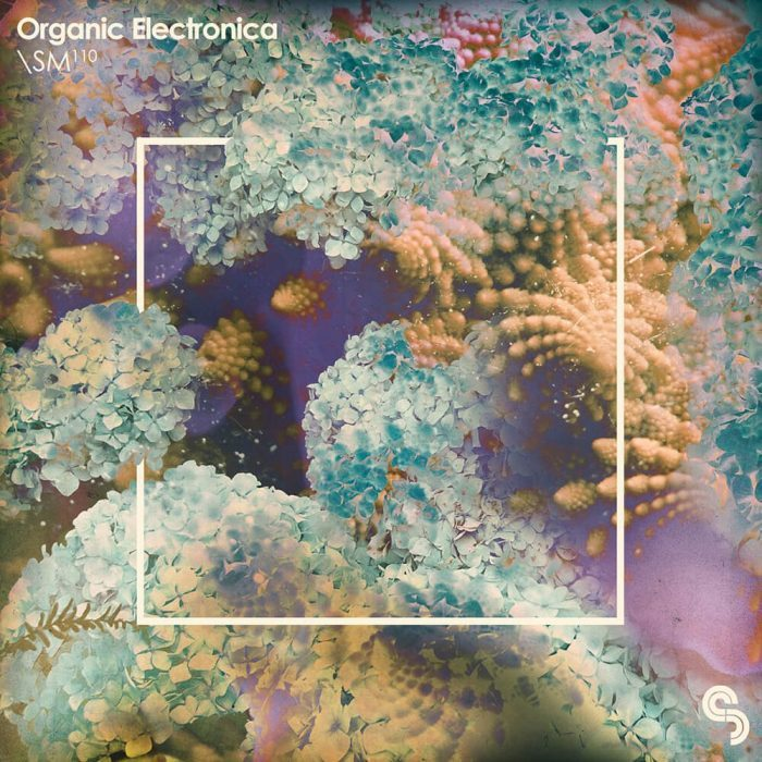 Sample Magic Organic Electronica