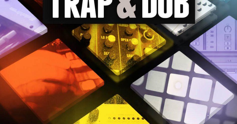 Niche Audio Trap & Dub Collection