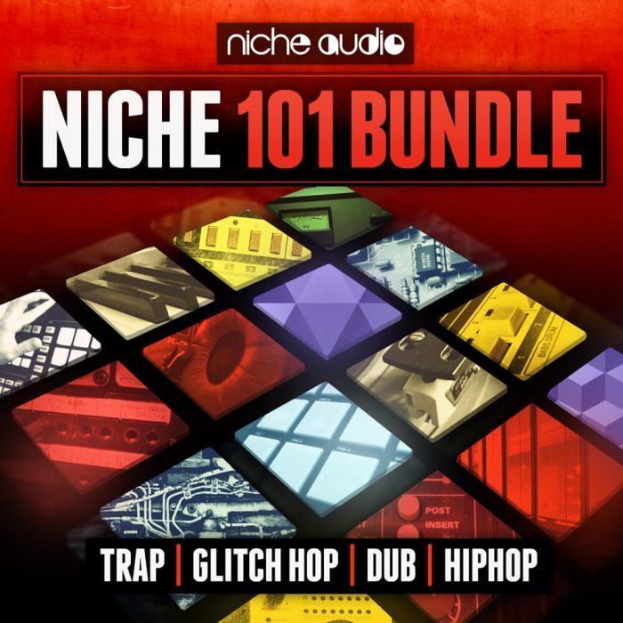 Niche 101 Bundle